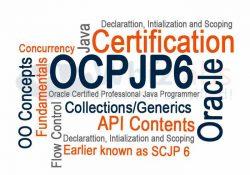 OJCP Sertifika Sınavlarına Hazırlık – Access Controllers (SJCP)